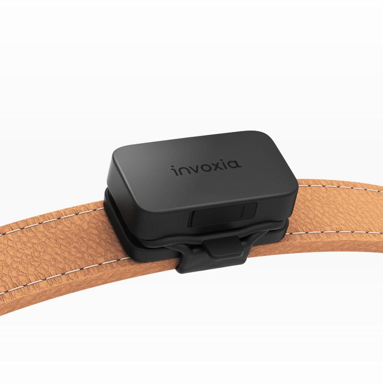INVOXIA - invoxia - GPS Pet Tracker
